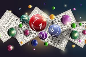 El Bingo